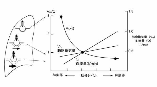 度 飽和 酸素 混合 血 静脈 難しく感じる循環動態モニターの原理(ビジランス編)